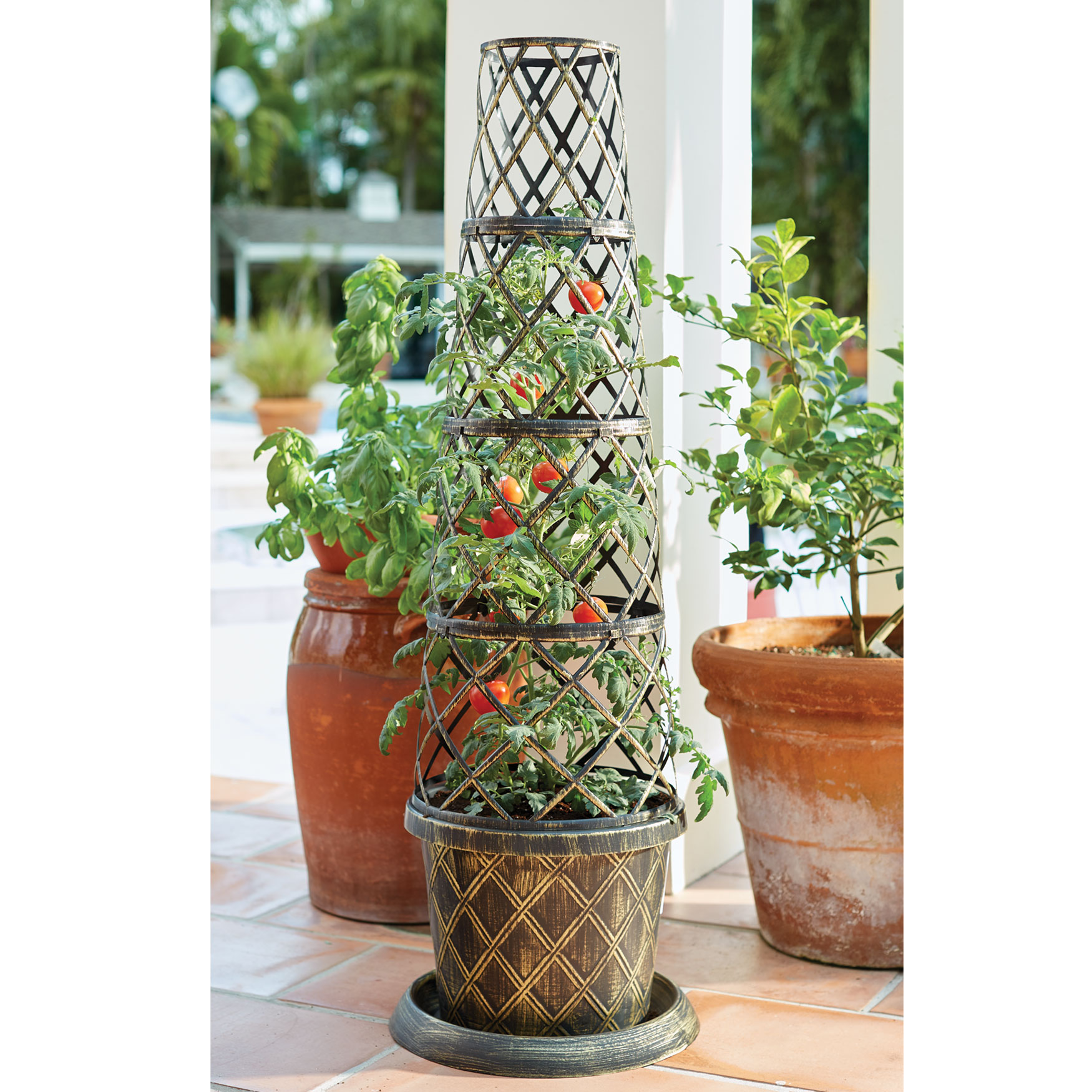 BrylaneHome Tomato Cone-Shaped Planter