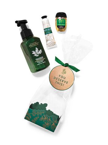 Aromatherapy   Eucalyptus Spearmint   Gift Set