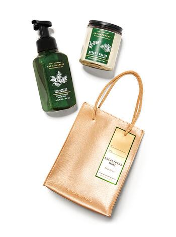 Eucalyptus Spearmint   Gift Bag Set